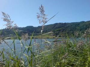 Wirklich idyllisch: das Meerfelder Maar in der Vulkaneifel