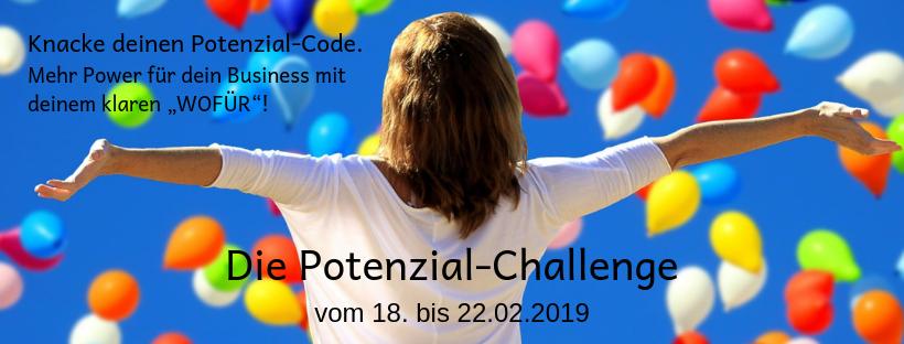 Banner Potenzial-Challenge