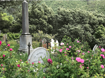 Friedhof Wellington