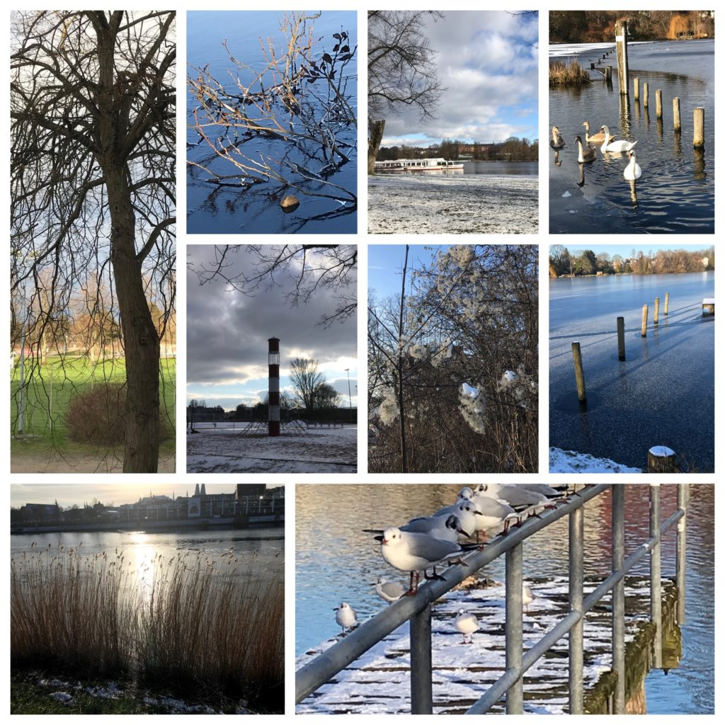 Winterfoto-Collage Lübeck Jan. 2021